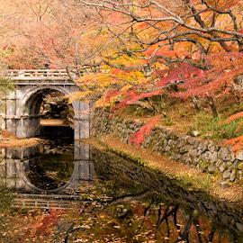 Bulguksa Scenery #1 by Doug Craig - Landscapes Travel ( temples, autumn, buddhist, asia, landscape, south korea )