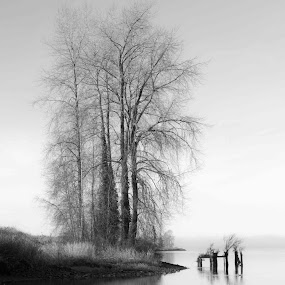 by Kyle Rea - Black & White Landscapes (  )