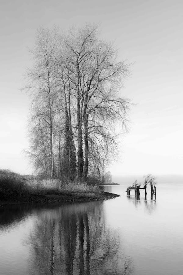 by Kyle Rea - Black & White Landscapes (  )