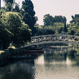 Venice Canals. by Tai Tran - Buildings & Architecture Bridges & Suspended Structures
