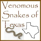 Venomous Snakes of Texas icon