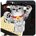 Game Cute cat simulator 3D apk for kindle fire