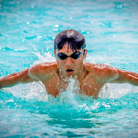 by Earl Masangkay - Sports & Fitness Swimming (  )