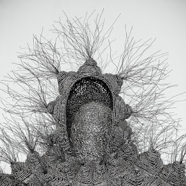 Sculpture by Peter Primich - Artistic Objects Other Objects ( sculpture, black& white, wires )