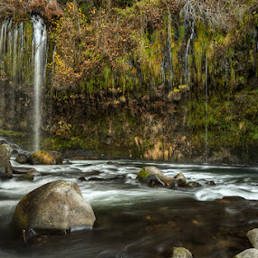 Mossbrae Falls by Walter Hsiao - Landscapes Waterscapes ( stream, mossbrae falls, california, waterfall, moss, rapids, rock, dunsmuir )