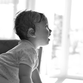 Sunshine by Melanie Pista - Babies & Children Toddlers ( black and white, sunshine, crawling, toddler, profile )