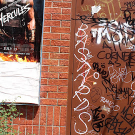 Hercules by Ronnie Caplan - City,  Street & Park  Neighborhoods ( streetscene, graffiti, poster, door, bricks, hazard cone )