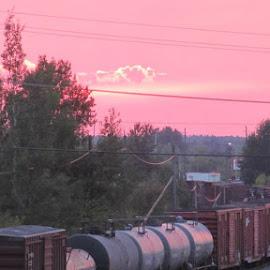 by Shawna Hoffstrom Chapman - Transportation Trains