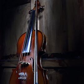 violin by Gigih Ardiantoro - Artistic Objects Musical Instruments ( violin, biola, pixoto nusantara, pixoto indonesia, alat musik, #violin,  )
