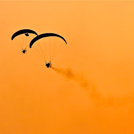 Paratroopers silhouetted against the sky at dawn by Nashira Usef - News & Events World Events ( dawn, national day, negative space, crisp, silhouette, doha, paratrooper, minimal, qatar, celebration, sunrise )