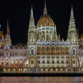 Hungarian Parliament by Izzy Kapetanovic - Buildings & Architecture Public & Historical ( parliament, hungary, budapest, night, historical, architecture, danube, nignscape )