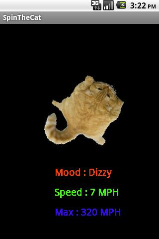 Spin The Cat