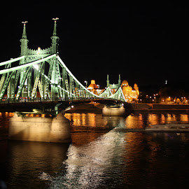 Bridge of Freedom at night by Zsigmond Bujtor - City,  Street & Park  Night ( lights, hungary, reflection, budapest, night, bridge, boat, danube, river )