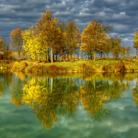 Grove by Boris Frković - Landscapes Waterscapes ( clouds, reflection, tree, color, autumn, ivanic, lake, pond, grove )