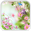 Flowers Live Wallpaper APK for Blackberry