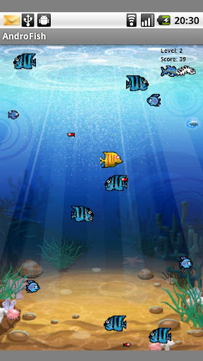 AndroFish 1.5