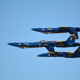 Blue angles air show SF 2014 by Yoni Godefa - Travel Locations Air Travel