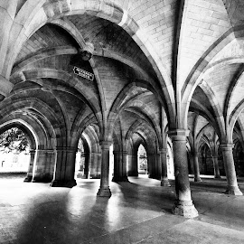 Glasgow Uni Cloisters by Wendy Milne - Buildings & Architecture Public & Historical