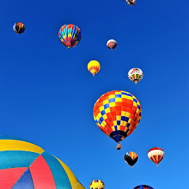 Up, Up And Away by Roy Walter - Transportation Other ( transportation, hot air balloons, balloons, flight. colors )