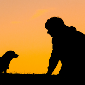 Do you want to play by Eladio Gomes - People Portraits of Men ( silhouette, sunset, shape, dog, profile,  )