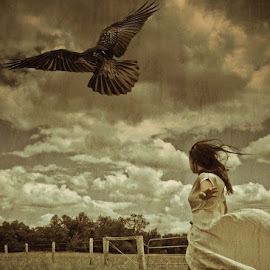 Come fly with me by Janine Langhorne - Digital Art People