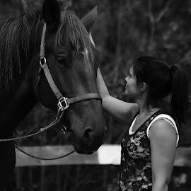 The Bond by Jacqui Sjonger - Animals Horses ( love, freedom, nature, black and white, companion, horse, tender, friendship, special )
