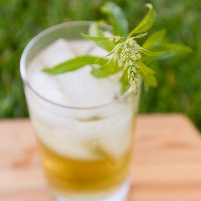 Lemon Verbena Lemongrass Syrup