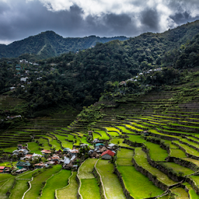 Batad by Don Saddler - Landscapes Travel ( renewal, green, trees, forests, nature, natural, scenic, relaxing, meditation, the mood factory, mood, emotions, jade, revive, inspirational, earthly )