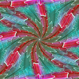 BYGS 1 - Pinwheel by Tina Dare - Illustration Abstract & Patterns ( abstract, patterns, colorful, designs, distorted, pinwheel, mosaic, spokes, shapes )