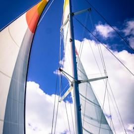 We are sailing by Petra Bensted - Landscapes Travel ( boating, cruising, yachting, sailing, whitsundays, holidays )