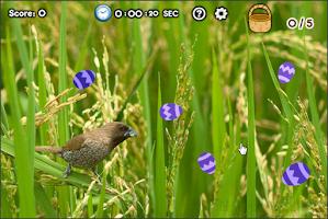 Screenshot of Easter Egg Hunt