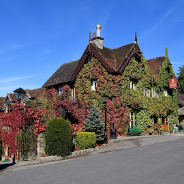 Viginia Creeper by Aliy Fowler - Buildings & Architecture Other Exteriors ( virginia creeper, autumn leaves, autumnal, beautiful building, autumn, autumn colours, hotel, creeper, pub, colorful, mood factory, vibrant, happiness, January, moods, emotions, inspiration )