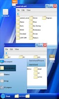 Screenshot of Windows File Manager