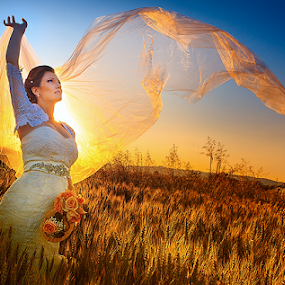 bride by Dejan Nikolic Fotograf Krusevac - Wedding Bride ( wedding, matrimoni, photo, hochzeit, fotograf,  )
