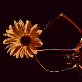With a Twist by Liz Crono - Flowers Single Flower ( wine, single, glass, flower )