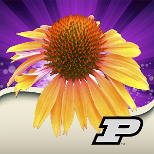 Purdue Perennial Doctor For PC / Windows 7/8/10 / Mac – Free Download