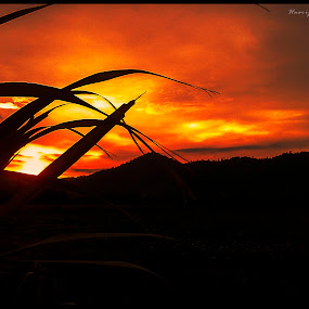 by Hasrijal Hasyiem - Landscapes Sunsets & Sunrises