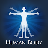 Fun Human Body Parts Quiz App free download apk