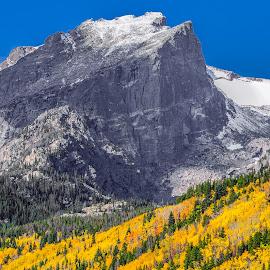 Rocky Mountain Grandeur by Jennifer McWhirt - Landscapes Mountains & Hills ( hills, mountains, autumn, photographybyjenmcwhirt.com, fall, colorado, aspens, rocky mountain national park )