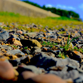 by Shyanne Minnier - Nature Up Close Rock & Stone