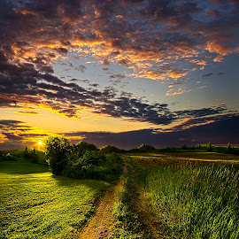 Country Roads Take Me Home by Phil Koch - Landscapes Prairies, Meadows & Fields ( vertical, photograph, farmland, yellow, storm, love, sky, nature, tree, autumn, shadow, orange, twilight, agriculture, horizon, portrait, environment, dawn, winter, season, national geographic, serene, trees, floral, inspirational, wisconsin, natural light, phil koch, spring, photography, sun, farm, path, horizons, rain, inspired, clouds, office, park, green, dirt road, scenic, morning, farming, shadows, field, red, blue, sunset, peace, fall, meadow, summer, earth, sunrise, landscapes,  )