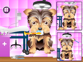 Screenshot of Dog Beauty Salon