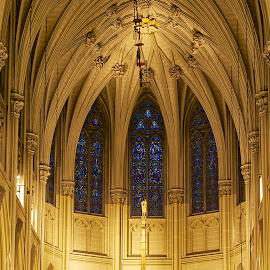 St Patrick's Cathedral by Mike Woodard - Buildings & Architecture Places of Worship ( cathedral, gold, new york, st patrick's )
