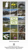 Screenshot of Alt Pirineu, deixa't guiar