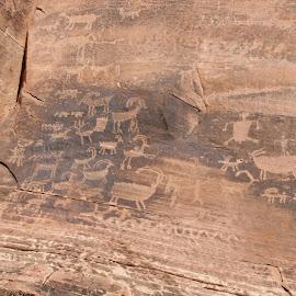 clear creek 3 by Debbie Theobald - Nature Up Close Rock & Stone ( nature, petroglyphs, arizona, unedited, rocks,  )