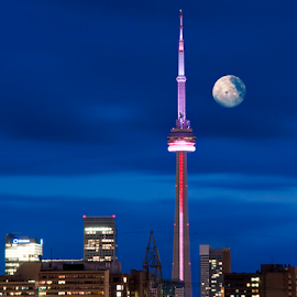 CN Tower with Moom by Robert Machado - City,  Street & Park  Skylines ( skyline, metropolis, colorful, metropolitan, toronto, architecture, beauty, cityscape, travel, city, modern, sky, rise, cn tower, evening, light, tall, downtown, structure, building, observation, canada, twilight, beautiful, horizon, ontario, tourism, skylight, scenic, dusk, landmark, urban, tower, vacation, dawn, cn, color, blue, outdoor, canadian, scene, high, view,  )