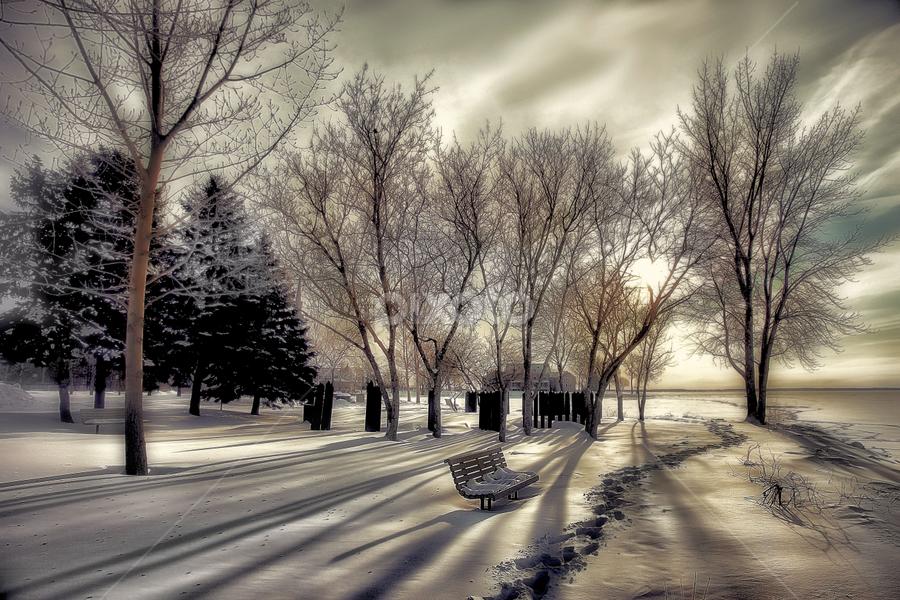 by Otto Mercik - City,  Street & Park  City Parks ( public, bench, furniture, object )