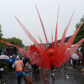 Notting Hill Carnival 2014 (4) by Vladimir Photo - News & Events Entertainment ( london carnival (4) )