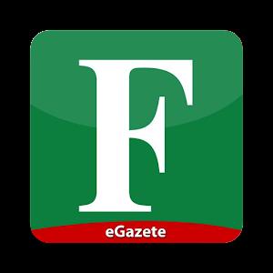 Cover art Fanatik eGazete