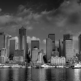 City by Jimmy Jin - City,  Street & Park  Skylines ( skyline, seattle, black and white, cityscape, city )